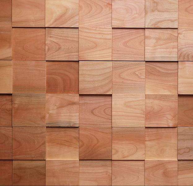 Pareti In Legno Multistrato: Vano di carico con pareti e pianale rivestiti in...