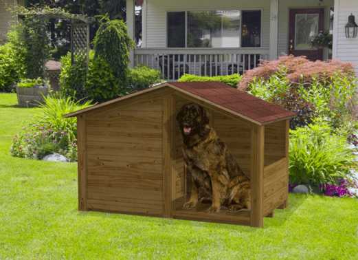 Cuccia in legno per cani da esterno gohan for Casette in legno per cani grandi